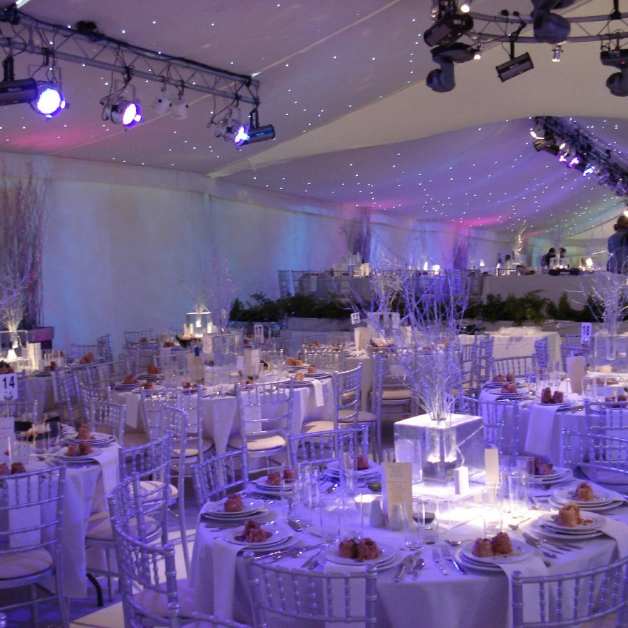 White Starcloth marquee