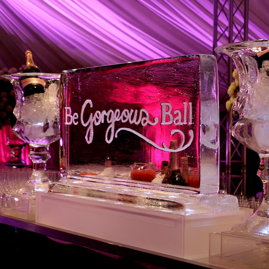 Ice Bar - Party Planner Ingredients