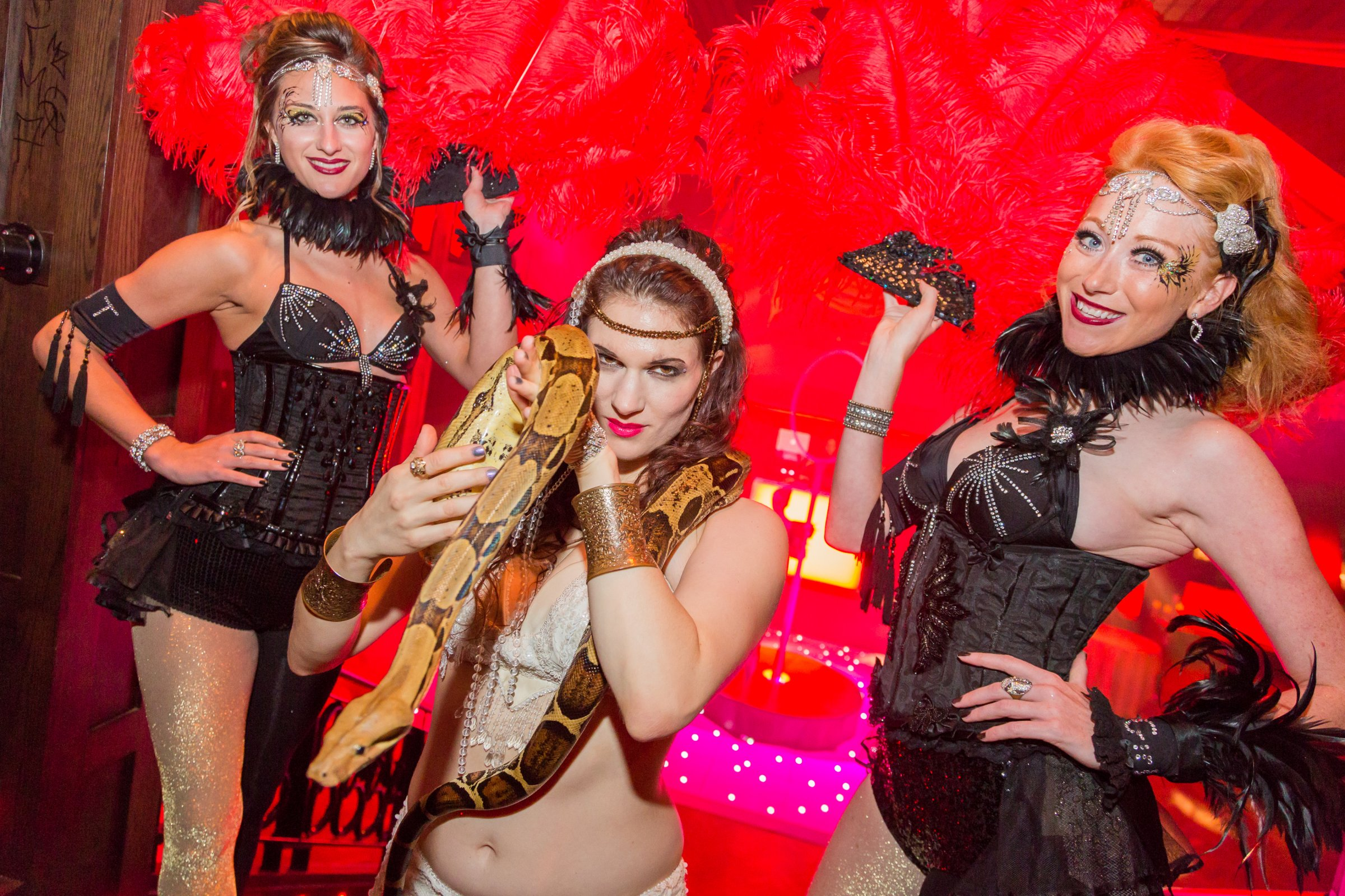 Circus themed Event - acts & entertainers