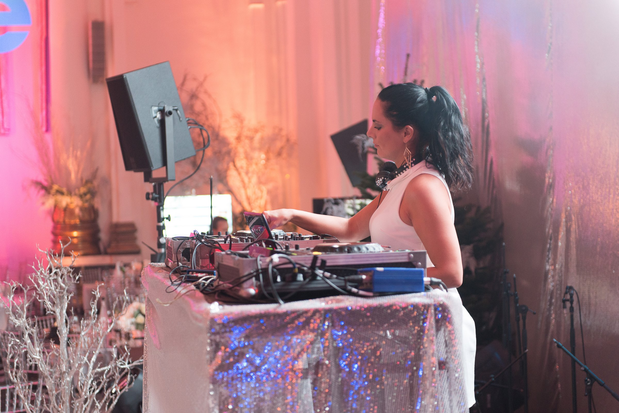 Corporate Winter Wonderland Event DJ